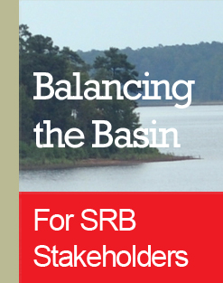 Balancing the Basin logo