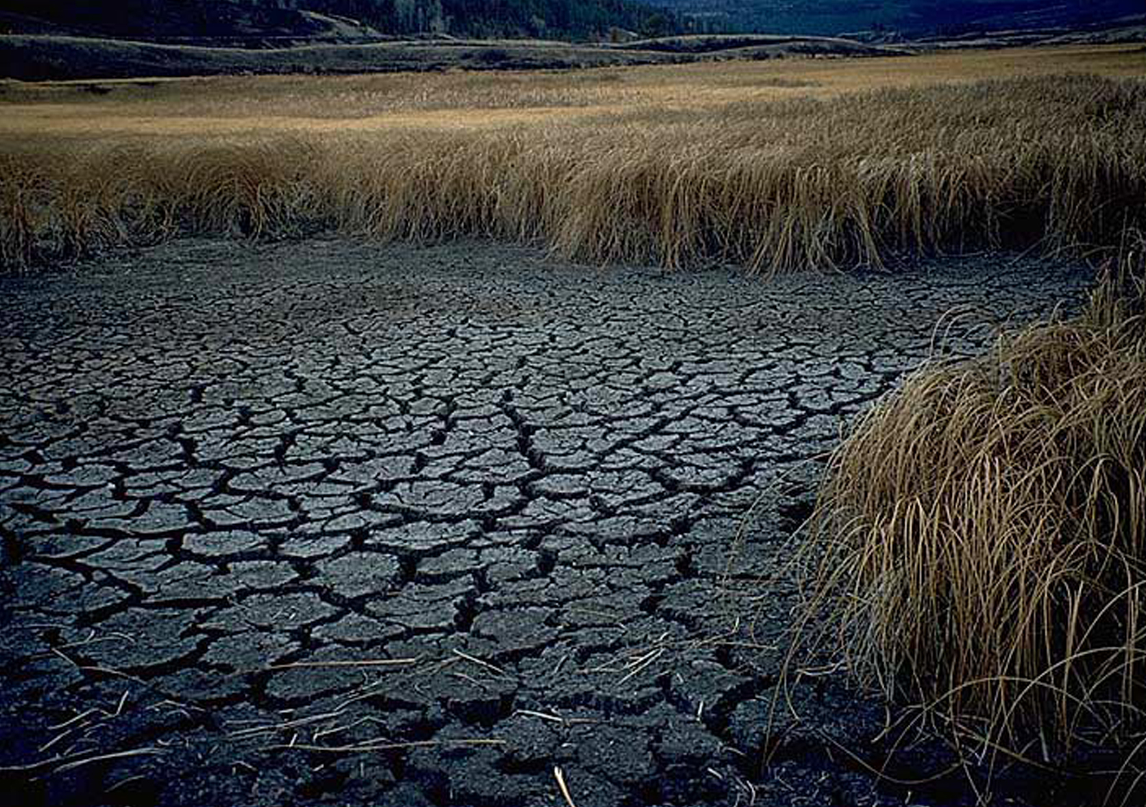 Photo of the drought conditions