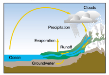This is a picture of the Hydrologic Cycle